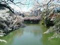 [散歩] 2014/03/31、皇居北の丸公園のお濠。ボートが珍しくいない。