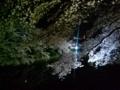 [散歩] 2014/04/01、千鳥ヶ淵の夜桜。