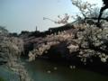 [散歩]2015/03/30、皇居北の丸の武道館を臨んで