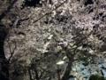 [散歩]2015/03/31、千鳥ヶ淵。