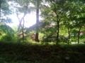 [散歩]  2015/05/04、森林公園にて。