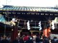 [散歩]2016年元旦、根津神社。