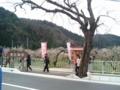 [散歩] 2016/03/13、越生の梅林