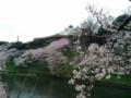 [散歩]2016/04/01、北の丸公園