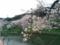 2016/04/01、北の丸公園