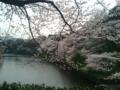 [散歩]2016/04/06、北の丸公園