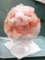 2016:07/17、日光の天然氷で作ったかき氷(苺)