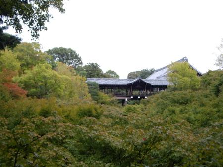 2016/10/22、京都・東福寺。通天橋を望む