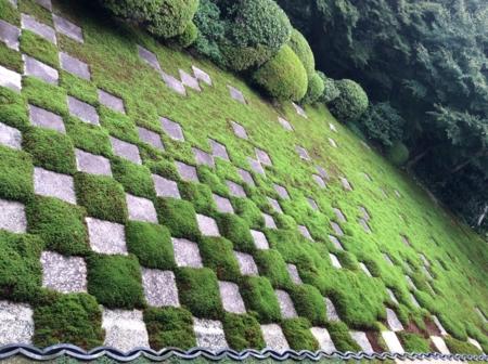 2016/10/22、京都・東福寺の北庭