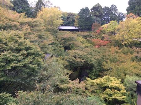 2016/10/22、京都・東福寺