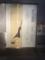 2016/10/22、京都・錦市場のシャッター・アート。伊藤若冲。