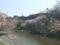 2017/04/4、北の丸公園