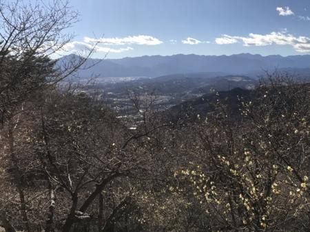 2018/01/01、宝登山のろうばい園