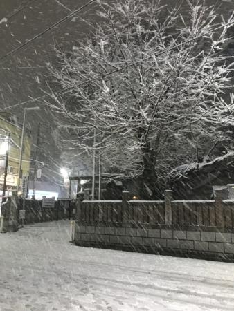 2018/01/22、都内の大雪(まだ積もるよ)