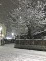 [散歩]2018/01/22、都内の大雪(まだ積もるよ)
