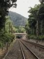 [旅行][京都]2018/07/29、京都。嵐山嵯峨野、竹林の道の途中