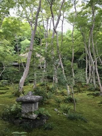 2018/07/29、京都。嵐山嵯峨野、祇王寺