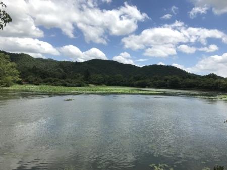 2018/07/30、京都。嵐山嵯峨野、大覚寺。広沢池