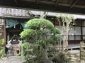 [旅行][京都]2018/07/30、京都・島原「輪違屋」