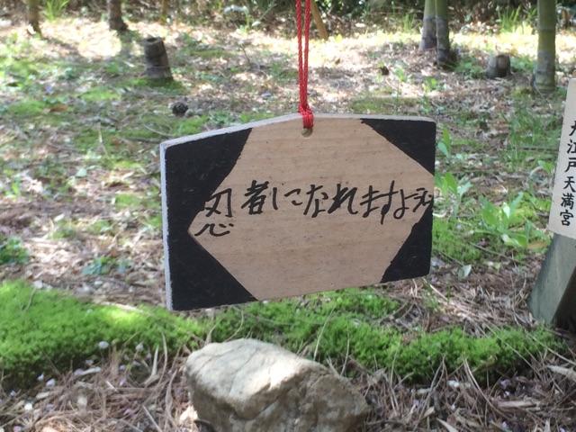 f:id:orenobuzoku:20160418223550j:plain