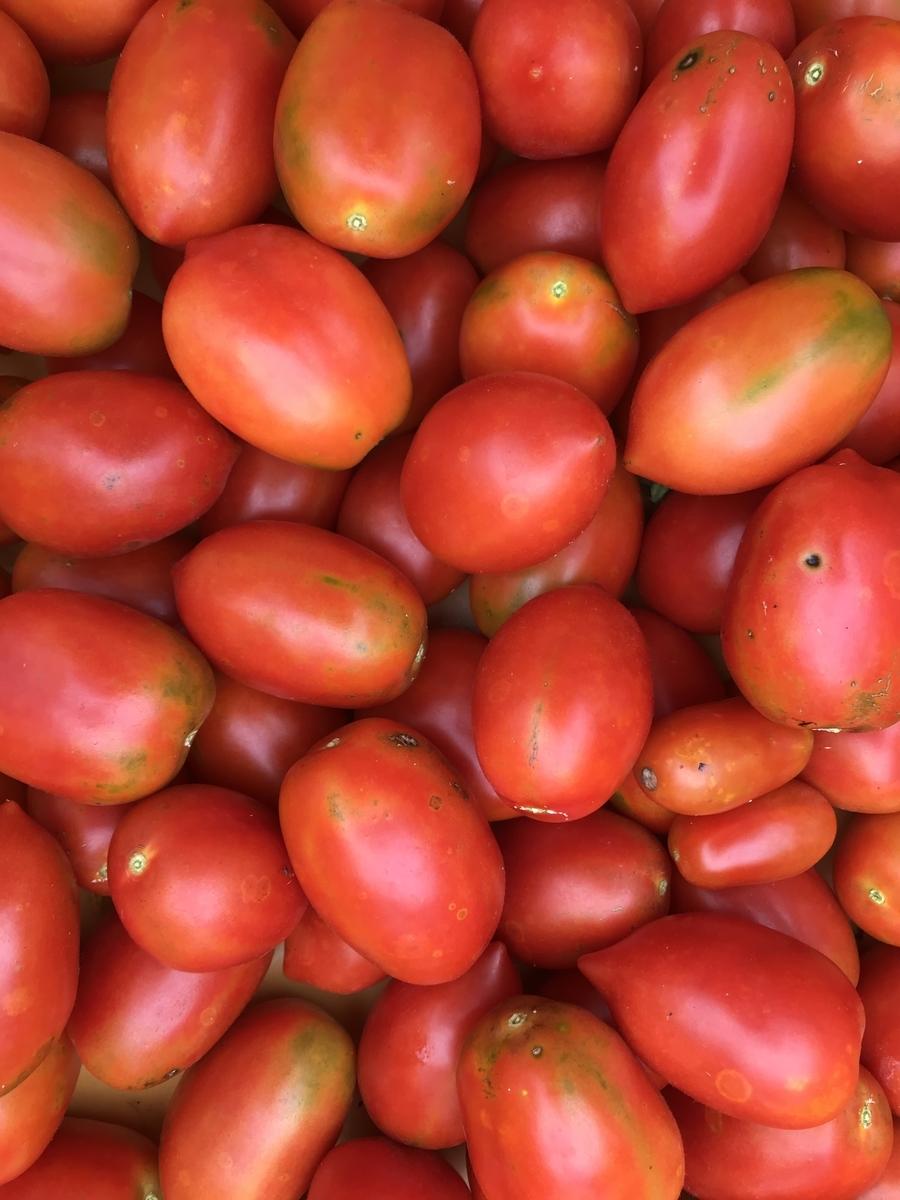 f:id:organicfarm:20190823130615j:plain