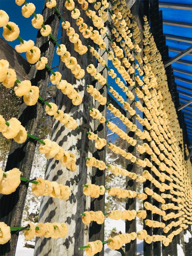 f:id:organicfarm:20200207154304j:image