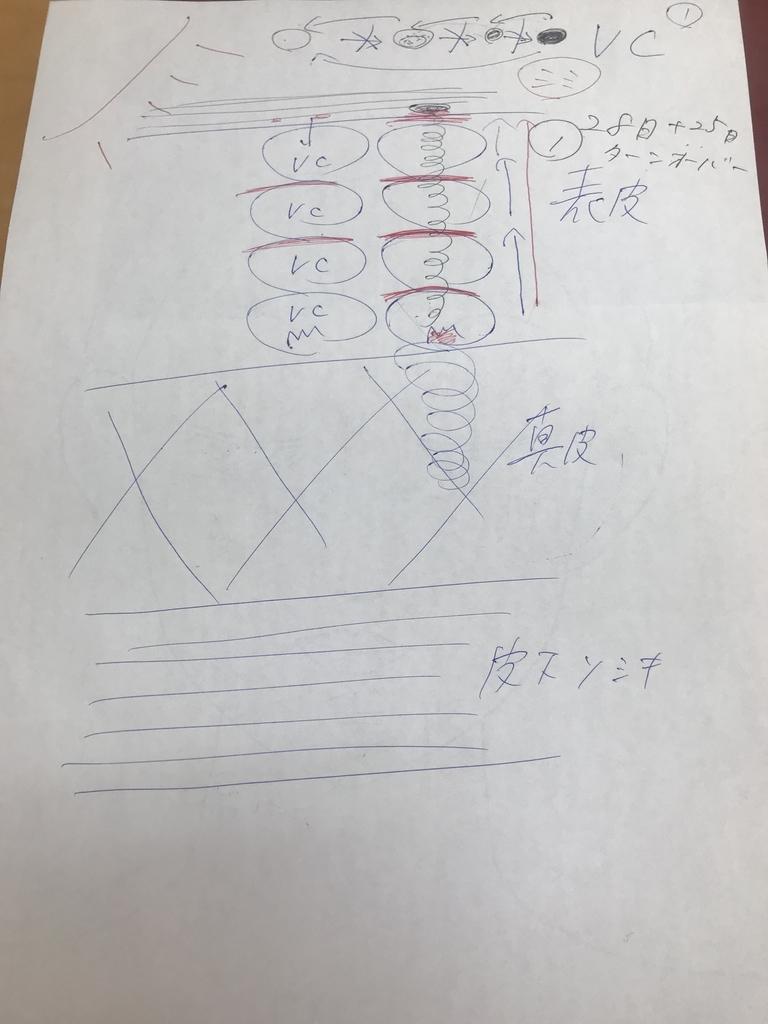f:id:oriagi0926:20181102041030j:plain