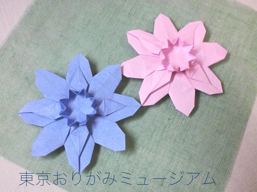 f:id:origami-noa:20161031124439j:plain