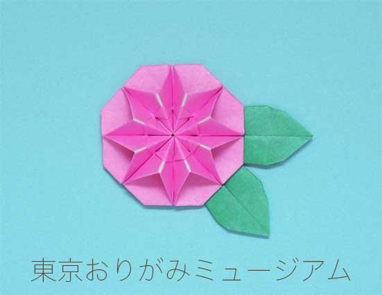 f:id:origami-noa:20161101160853j:plain