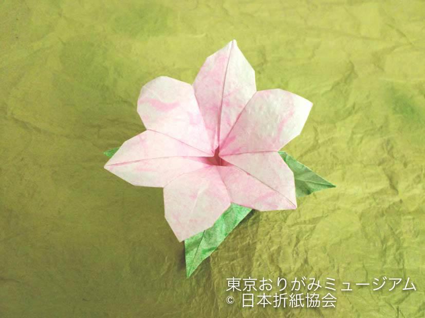 f:id:origami-noa:20170131144542j:plain