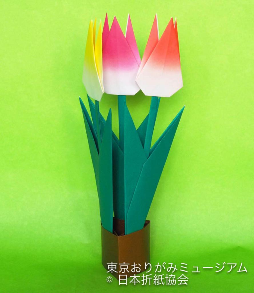 f:id:origami-noa:20170131150243j:plain