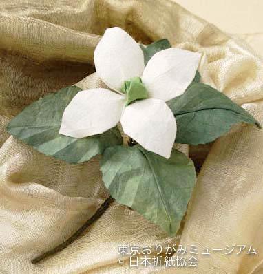 f:id:origami-noa:20170331112740j:plain