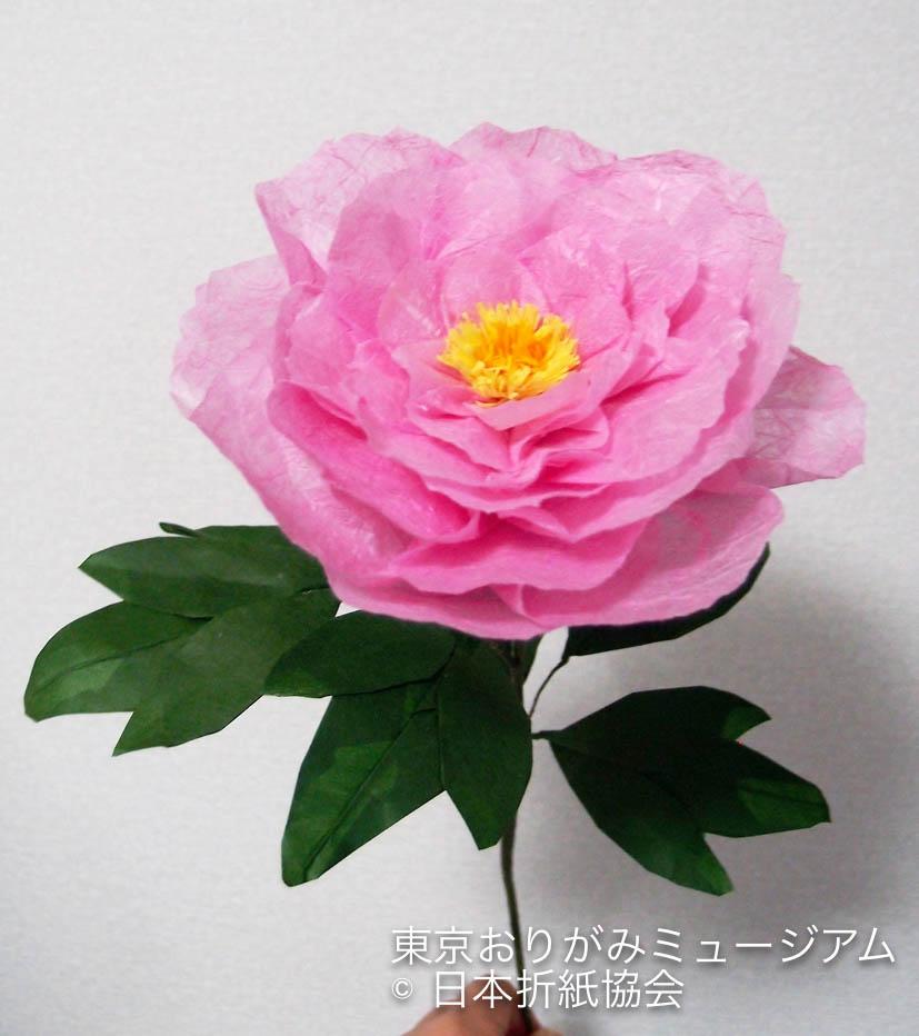 f:id:origami-noa:20170531131847j:plain