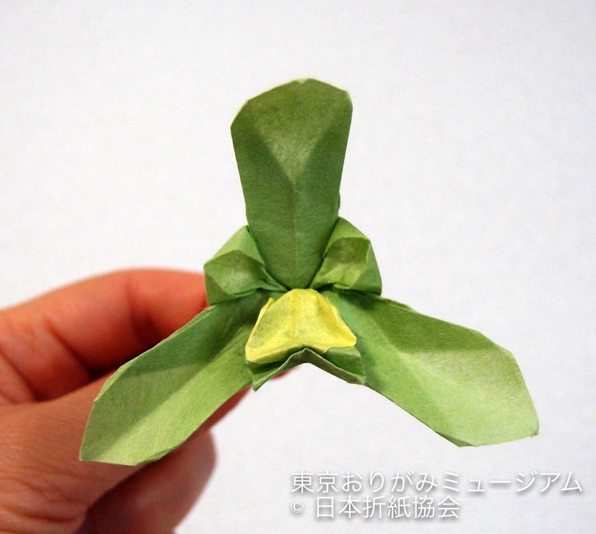 f:id:origami-noa:20171031200143j:plain