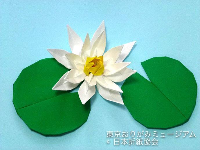 f:id:origami-noa:20180629143810j:plain