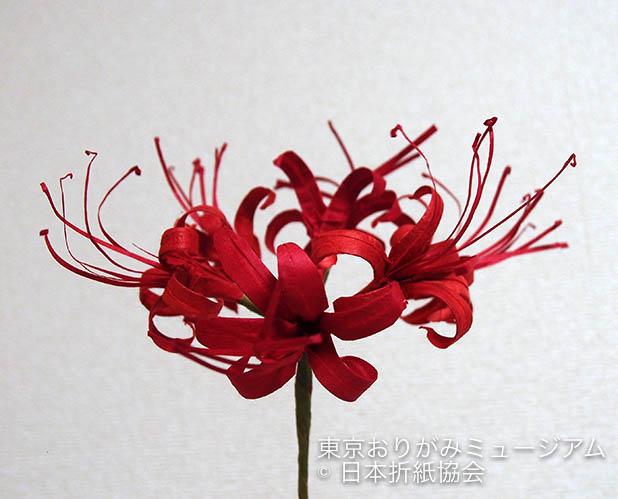 f:id:origami-noa:20180730173339j:plain