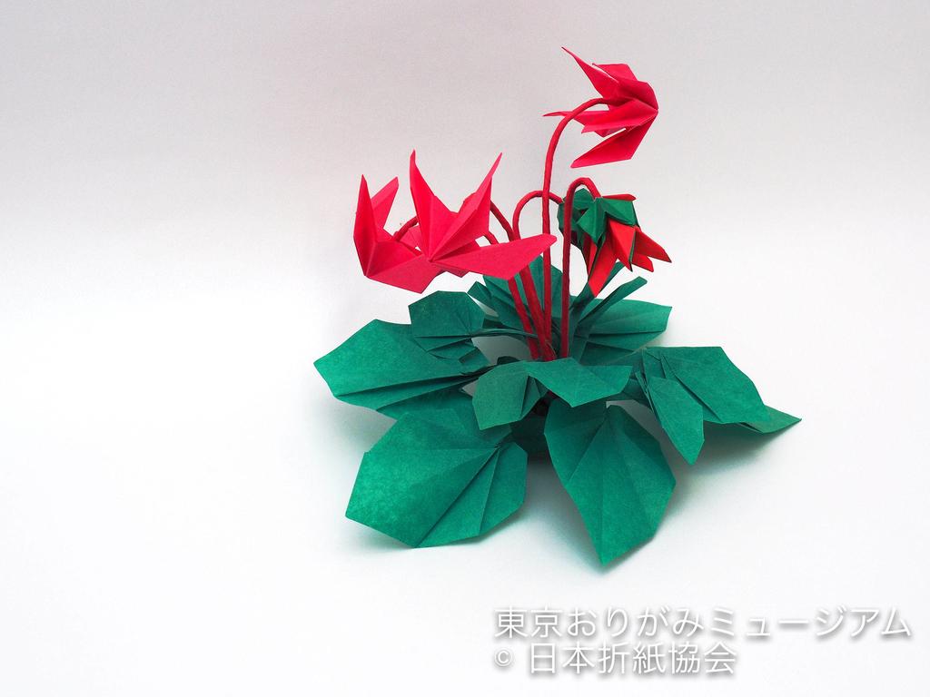 f:id:origami-noa:20181106132921j:plain