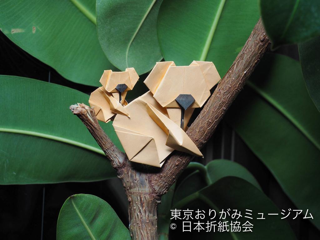 f:id:origami-noa:20190205143104j:plain