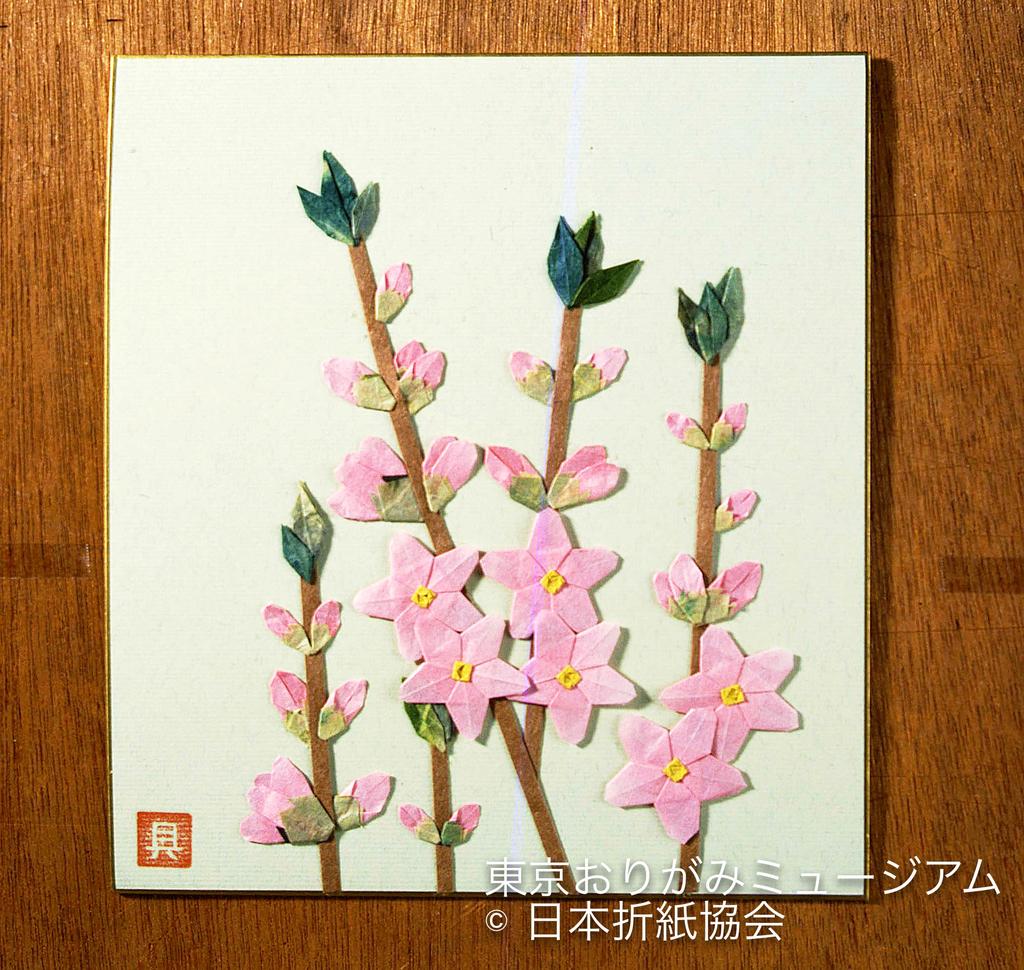 f:id:origami-noa:20190305143023j:plain