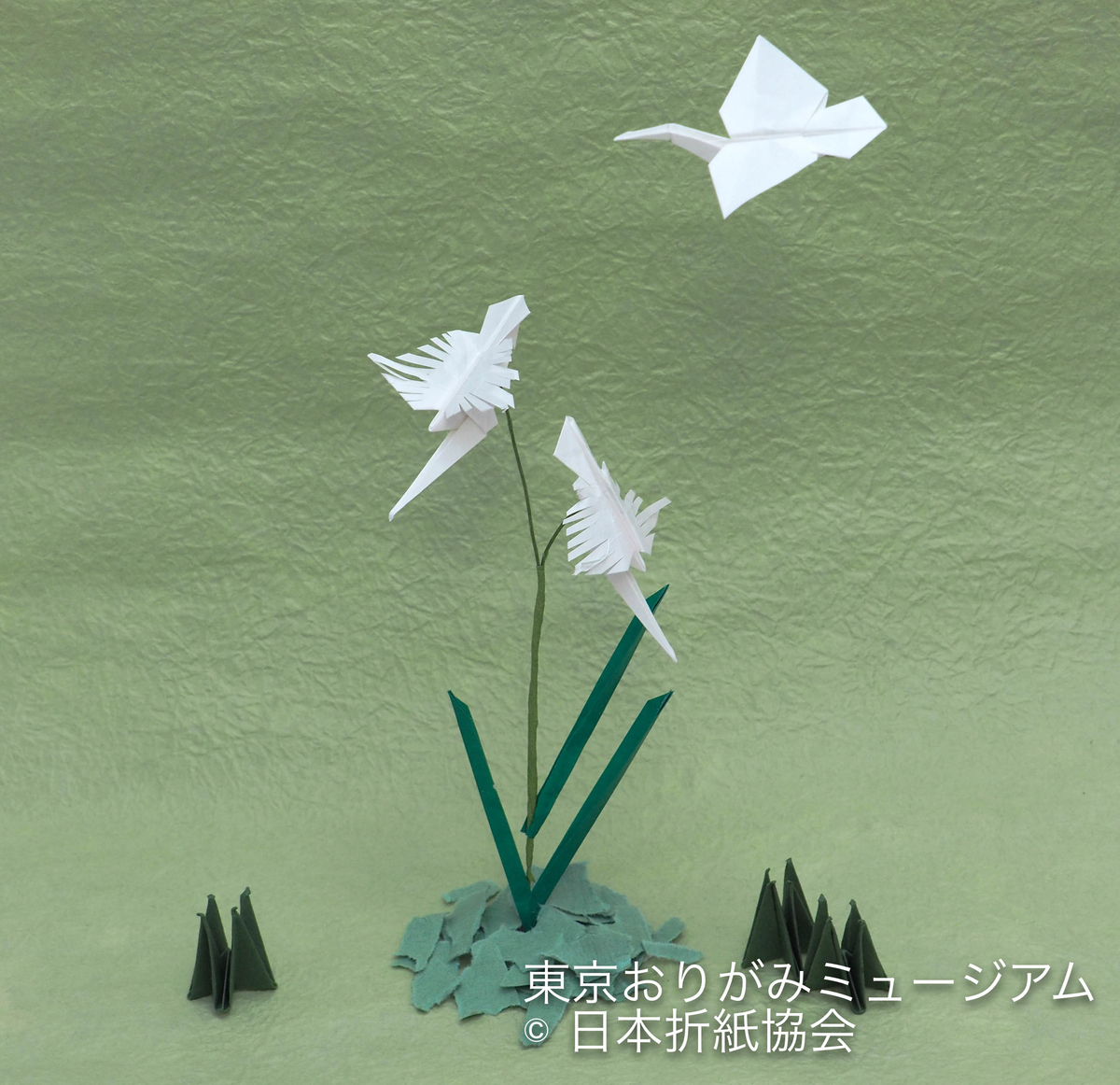 f:id:origami-noa:20190702150543j:plain