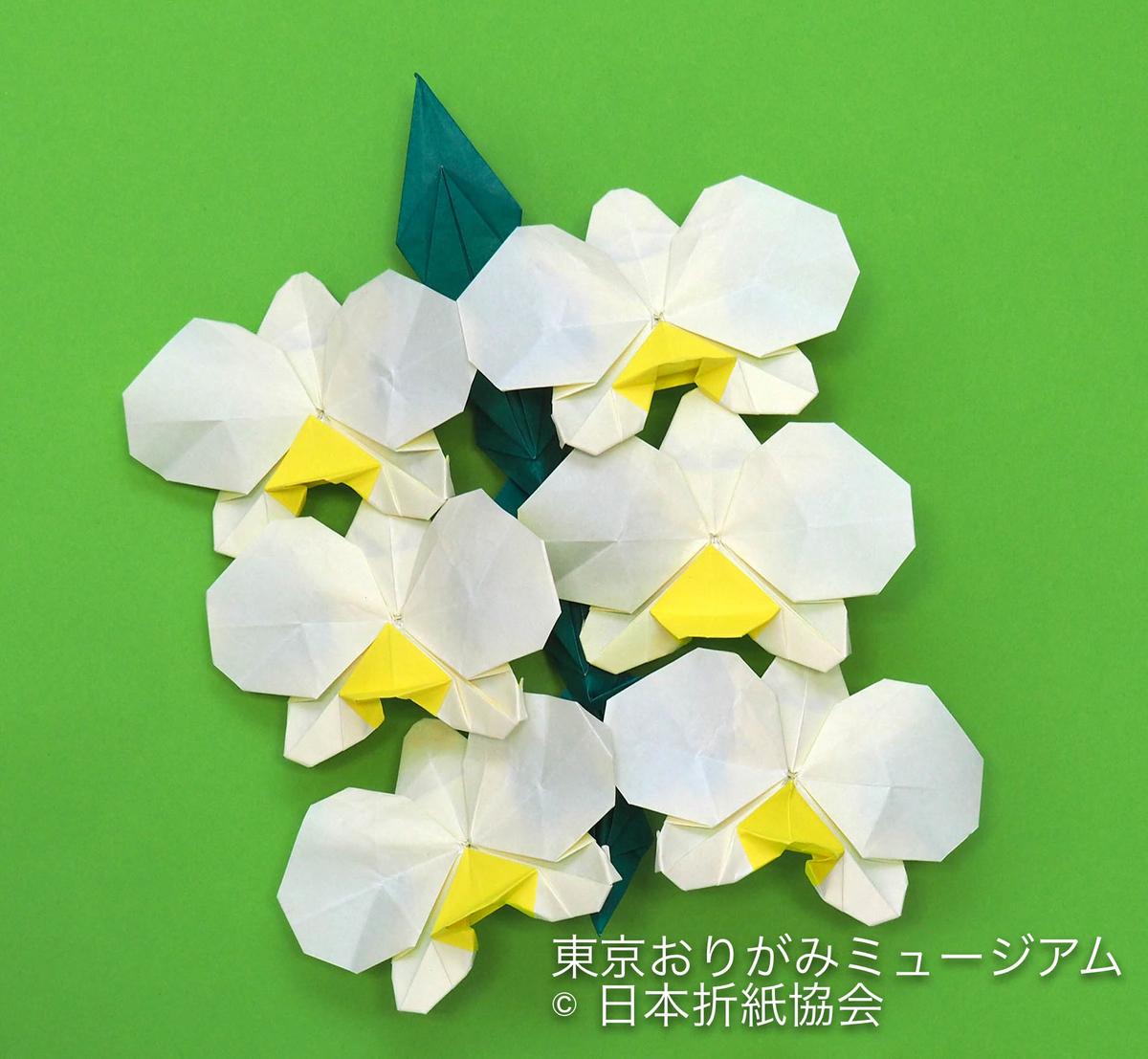 f:id:origami-noa:20190903142607j:plain