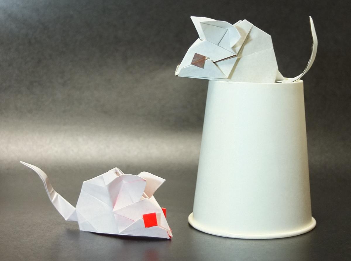 f:id:origami:20200502125037j:plain