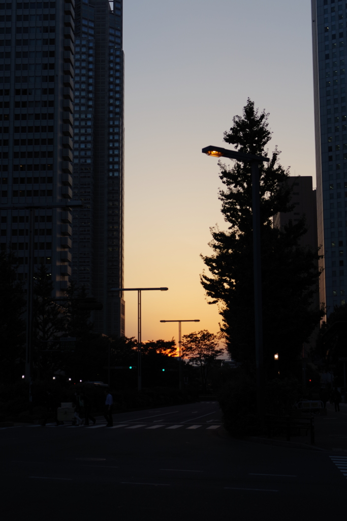 f:id:orihakisaragi:20161020205847j:plain