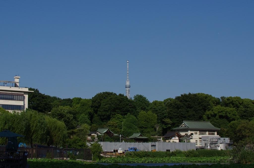 f:id:orihakisaragi:20170710234025j:plain