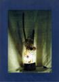 47(スタンド) W18/D18/H70(cm) 素材/木・和紙・ガラス