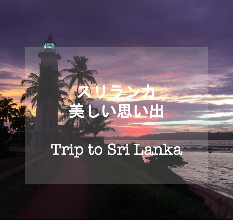 Sri Lanka trip travel スリランカ 海外旅行 旅行 絶景 夕日