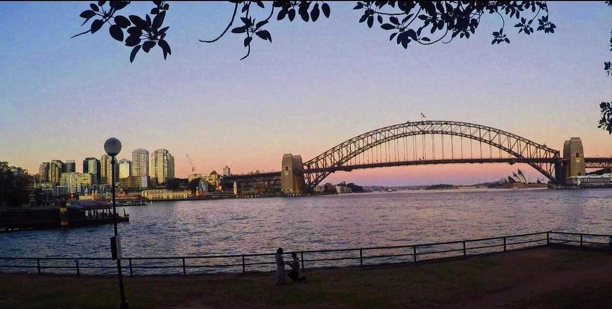 オーストラリア ハーバーブリッジ プロポーズ