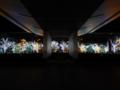 光のオーケストラ 京都新聞写真コンテスト