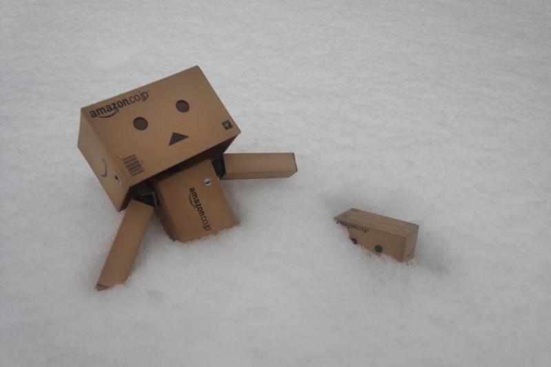 ダンボー 絶望 雪
