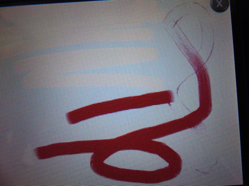 f:id:ornith:20140114224158j:plain